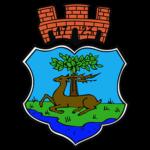 Miasto i Gmina Ryn